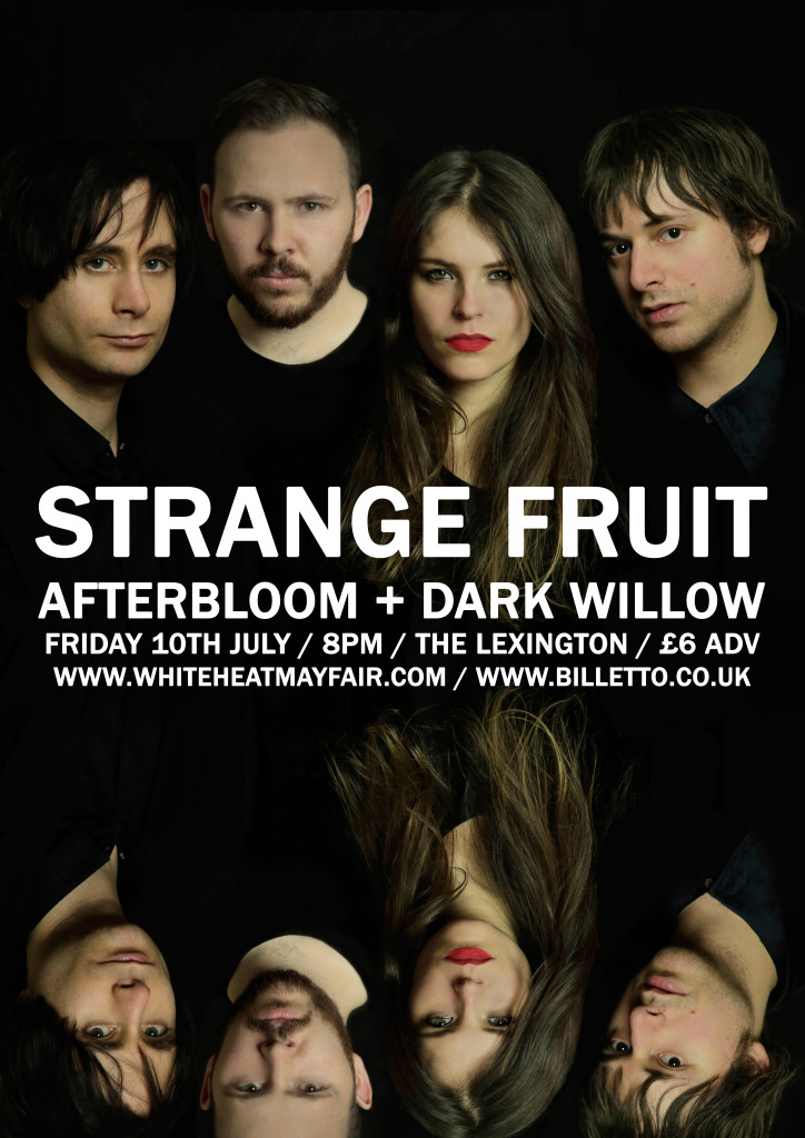 15-07-10_strange_fruit copy
